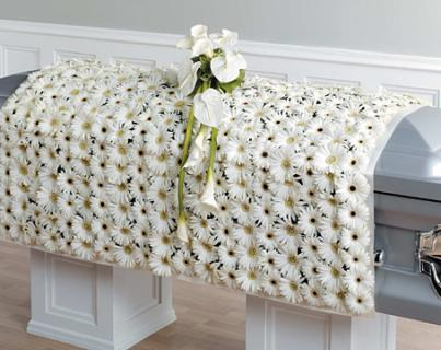 White Gerbera Blanket Casket Spray